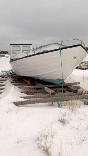 115-HP, 29 Ft. Fibreglass Boat