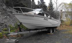 Boat bought in Ontario but I have no time to use it. Comes with 200 hp Evinrude ( Mid 80's). Engine runs but needs a tune up. Comes with trailer, fish finder, 2 electric downriggers, anchors & tie up lines, and battery charger.